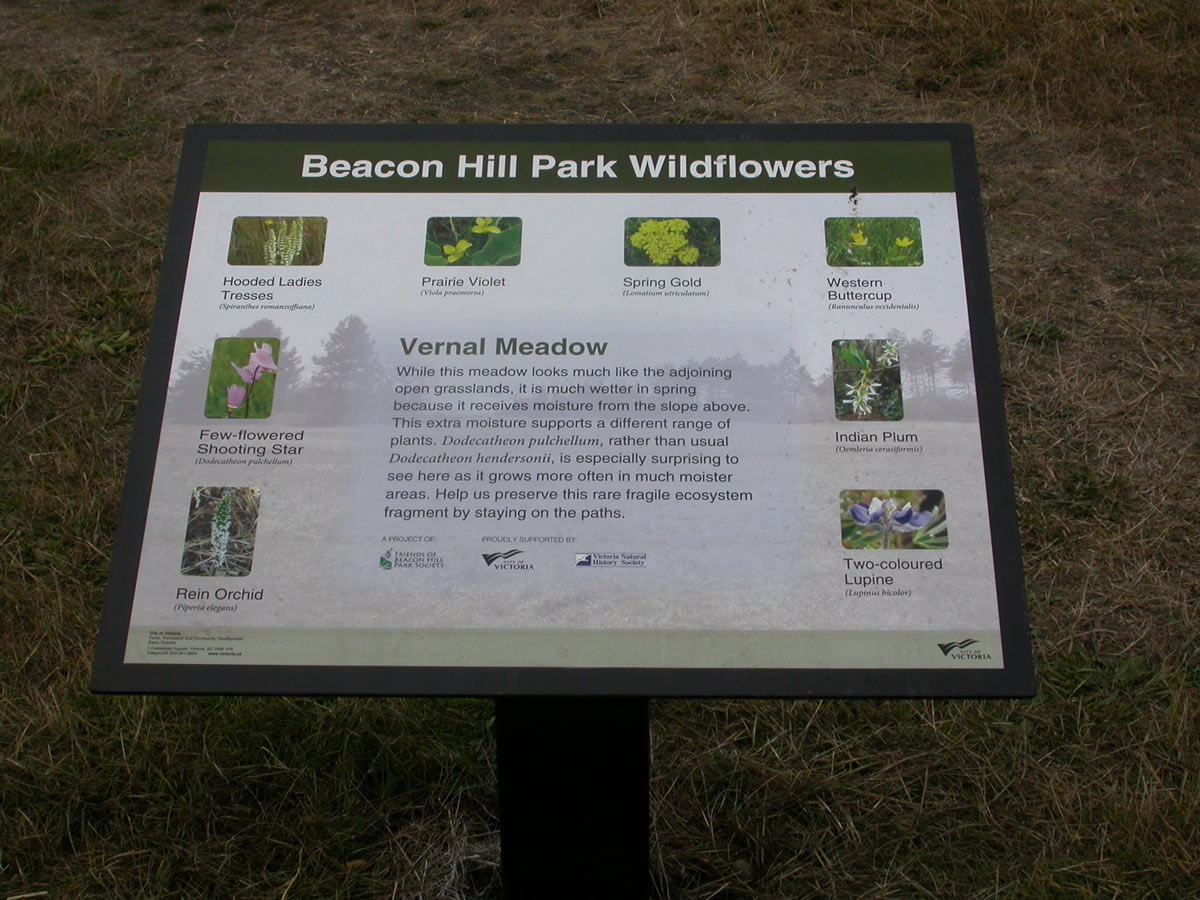 BeaconHillSign web