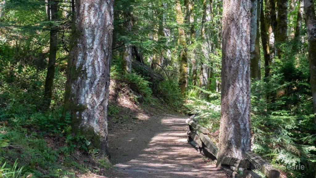 Havenwood Park trail